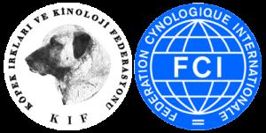 KIF - FCI