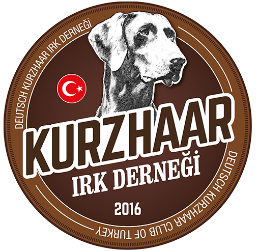 Deutsch Kurzhaar Türkiye
